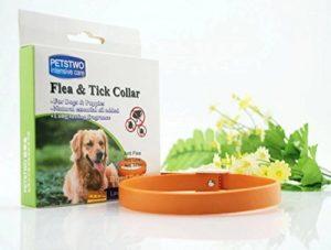 huiles essentielles anti puces et tiques pour chien TOP 2 image 0 produit