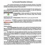 HuilesUtiles - La Formule Parasites Animaux - 20 ml de la marque image 2 produit