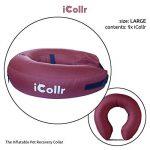 iCollr Collier Gonflable De Rétablissement d'Animal Familier - Collier Protecteur Pour Les Chiens et Chats en récupération post-opératoire de la marque iCollr image 1 produit