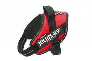 Julius-K9ID de la marque Julius K9 image 0 produit