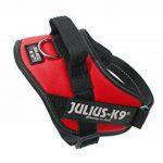 Julius-K9ID de la marque Julius K9 image 2 produit
