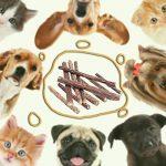 Love77 Matatabi Chat, Jouet Chats - 5 Catnip Stick Dentifrice Chat Nettoyage des Dents Naturel Nourriture Mastique Bois Catnip pour Tous les Chats de la marque Love77 image 2 produit