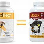 MaxxiDog - Supplément de joint de chien de MaxxiFlex plus avec la glucosamine, la chondroïtine, le MSM, l'acide hyaluronique, la griffe de diables, la bromélaïne et le curcuma - 120 comprimés aromatisés par foie de la marque maxxipaws image 1 produit