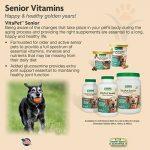 NaturVet TR VitaPet Senior Dog Multi Vitamins Healthy Chewable Tablets 60ct de la marque NaturVet image 4 produit