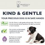 Nettoyant d'oreilles pour chiens Pro Pooch (250 ML) | Il arrête les démangeaisons, les hochements de tête et les odeurs | Recommandé par les vétérinaires | Pour les chiens avec acariens, levures, déma de la marque image 4 produit