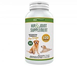 PetAmazed Supplément avancé pour chien pour les hanches et les articulations 120 gélules Le meilleur soulagement naturel de la douleur contient - Glucosamine HCL, Chondroïtine, MSM, vitamine C et acide hyaluronique - Fabriqué au Royaume-Uni, réduit la rig image 0 produit