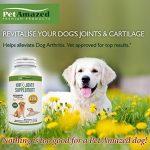 PetAmazed Supplément avancé pour chien pour les hanches et les articulations 120 gélules Le meilleur soulagement naturel de la douleur contient - Glucosamine HCL, Chondroïtine, MSM, vitamine C et acide hyaluronique - Fabriqué au Royaume-Uni, réduit la rig image 1 produit