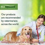 PetAmazed Supplément avancé pour chien pour les hanches et les articulations 120 gélules Le meilleur soulagement naturel de la douleur contient - Glucosamine HCL, Chondroïtine, MSM, vitamine C et acide hyaluronique - Fabriqué au Royaume-Uni, réduit la rig image 2 produit