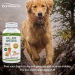 PetAmazed Supplément avancé pour chien pour les hanches et les articulations 120 gélules Le meilleur soulagement naturel de la douleur contient - Glucosamine HCL, Chondroïtine, MSM, vitamine C et acide hyaluronique - Fabriqué au Royaume-Uni, réduit la rig image 3 produit