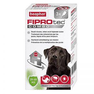 pipette antiparasitaire chien TOP 9 image 0 produit