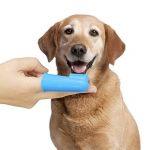 Pour Animal domestique Chien doigt Brosse à dents -- Hygiène Dentaire Pinceaux pour petits et grands chiens, chats, la plupart des animaux, y compris 2brosses à dents de doigts, 100% garantie de la marque Pet Soft image 4 produit
