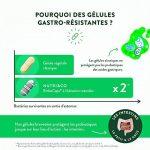 Probiotiques 30 Milliards d' UFC par Dose (2/j) • 7 Souches Bactériennes Humaines • 60 Gélules Végétales Gastro-Résistantes • Bactéries Garanties Vivantes • Fabriqué en France par Nutri&Co ® de la marque Nutri&Co image 2 produit