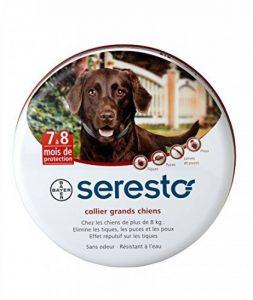 Seresto Collier antiparasitaire pour grands chiens plus de 8 kg de la marque Bayer image 0 produit