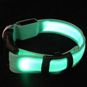 Sijueam Collier pour Chiens Chats Animaux Lumineux à LED rechargeable USB Taille Réglable pour Promenades Noctures 3 modes de clignotement - Vert, Taille XS de la marque Sijueam image 0 produit