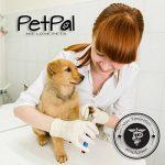 soin dés oreilles pour chien TOP 4 image 2 produit
