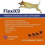 Supplément articulaire FlexiK9 pour chiens Glucosamine et Green Shell (120 comprimés à croquer) de la marque Simply Pets Online image 1 produit