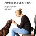 Supplément articulaire FlexiK9 pour chiens Glucosamine et Green Shell (120 comprimés à croquer) de la marque Simply Pets Online image 4 produit