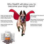 Supplément articulaire FlexiK9 pour chiens Glucosamine et Green Shell (120 comprimés à croquer) de la marque Simply Pets Online image 5 produit