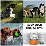 Supplément articulaire FlexiK9 pour chiens Glucosamine et Green Shell (120 comprimés à croquer) de la marque Simply Pets Online image 6 produit