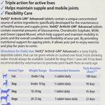 vetiq arthriti-um avancé HANCHE ET ARTICULATION Support supplément pour chats et chiens 1x 45 comprimés GRANDE FORCE COMPLEXE contiennent Glucosamine, Chondroïtine, Moule à lèvre verte et MSM de la marque VetIQ image 1 produit