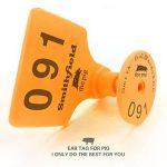 Zhengcheng (R) RFID Animal suivi Gestion de bétail Pig oreille Tag (lot de 100pcs) de la marque ZhengCheng (R) image 2 produit
